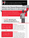 Shared Responsibility infographic