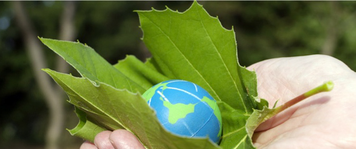 A hand holds an eco friendly leaf and earth symbol.