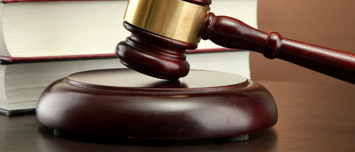 Suing Small Businesses: Trends to Watch